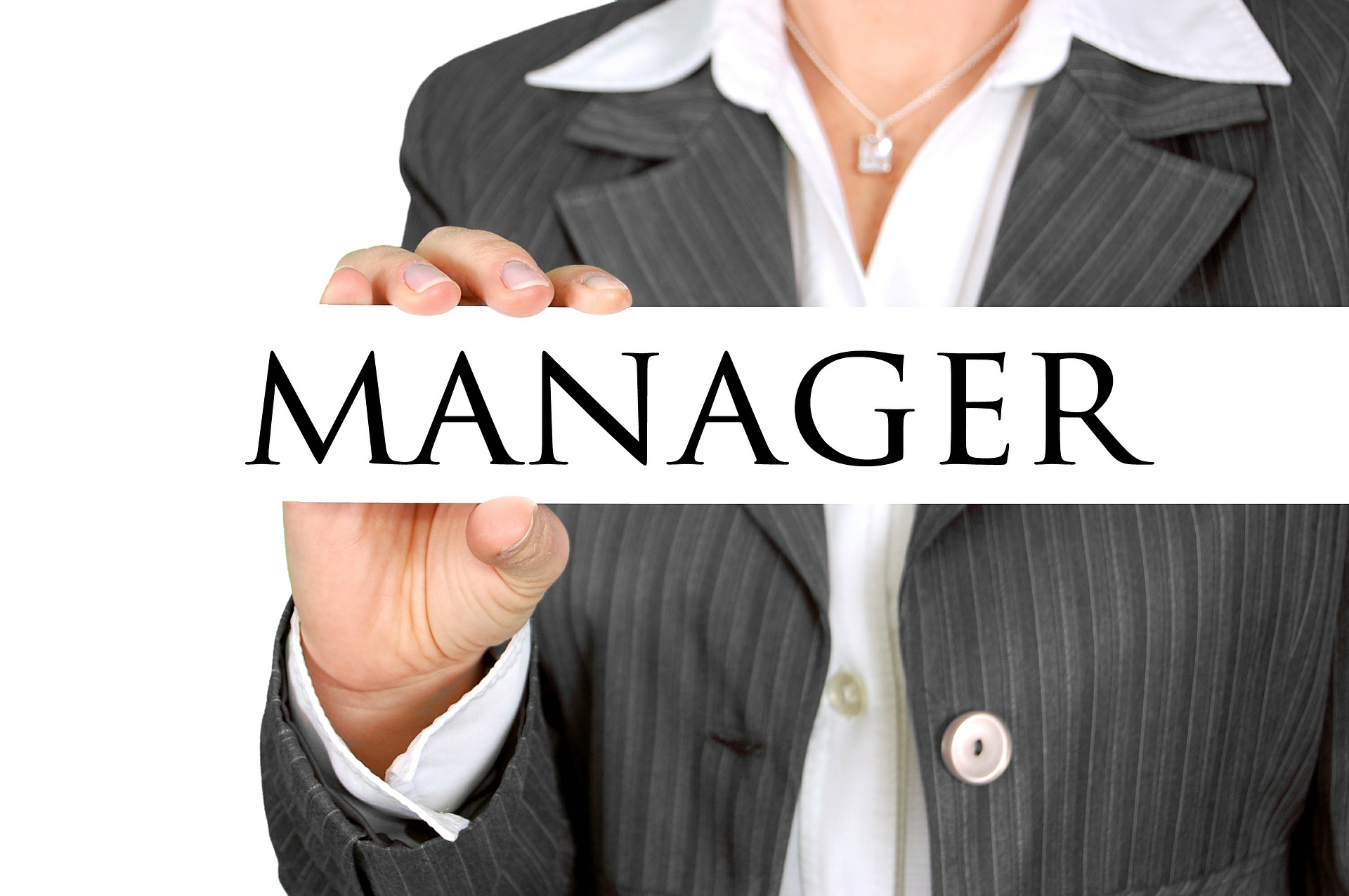 manager-454866_1920