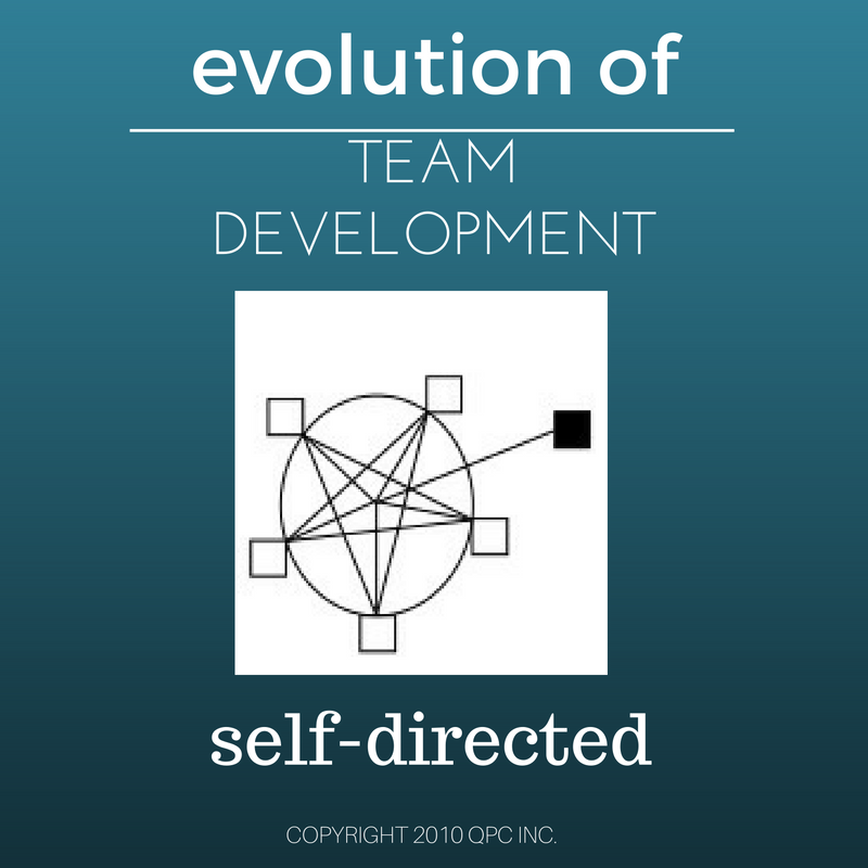 self directed work teams This article offers a definition of what a self-directed team is, how it functions, how it functions in industry, and what team members need to know to work well in teams the problems of finding highly skilled self-directed team members and how technology subjects can help prepare such people in the future are also addressed.