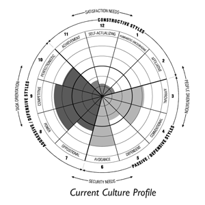organizational culture inventory (oci) survey essay See my 'game changer' white paper for a case study on what we achieved   the organizational culture inventory® (oci®) is the world's most thoroughly.